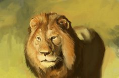 "EACHEN CHEN: ""still messing around with brushes… and photo study of a lion. I just had this urge to draw one ??"" (throughout my stalking of her art she has consistently rendered fur in this phenomenal, beautiful way, I just.. urghhh ;___;)"