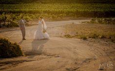 Milton Rios Fotografo » Sitio oficial Milton Rios Fotografia » boda en valle de guadalupe #bodaviñedo #viñedo #bodadestino #novios