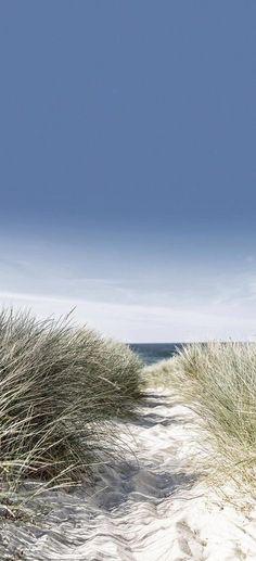 EUROGRAPHICS Türtapete »Dunes with Beach Grass«, 92/202 cm für 29,99€. Motiv: Strand mit Dünen und Gräsern, Großformatige und effektvolle Motive bei OTTO