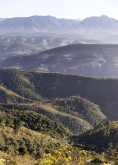 Ann's Villa — Obie Oberholzer South African Art, Beautiful Places, Ann, Villa, Wildlife, Mountains, Country, City, Travel