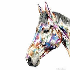 Modern animal artwork in bold bright colours Watercolor Paintings Of Animals, Watercolor Horse, Animal Paintings, Watercolour, Chloe Brown, Brown Art, Bright Colours, Contemporary Artwork, Pet Portraits