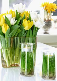 Easter tulips (syhina.blogspot.fi) Tulips, Glass Vase, Decorative Boxes, Easter, Spring, Flowers, Crafts, Iran, Inspiration