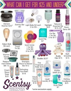 On a budget but LOVE Scentsy? Check out this great list of all the things you can get that are $25 and under!