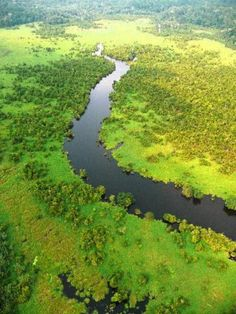 Aerial view of #Loango national park, #Gabon