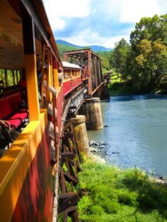 Great Smokey Mountains Railroad. Bryson City, NC Way better than you would imagine. Scenery great in the Fall.
