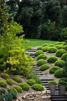 Hill Landscaping Ideas -