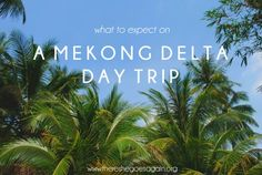 Take a look into a day tour around the Mekong Delta in Vietnam.