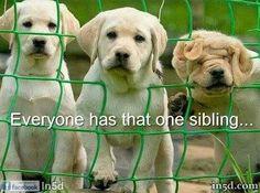 Everyone has that one sibling!