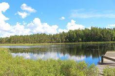 Skogsfastighet, Möklinta, Åverka