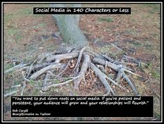 You want to put down roots on #SocialMedia. If you're patient and persistent, your audience will grow and your relationships will flourish.