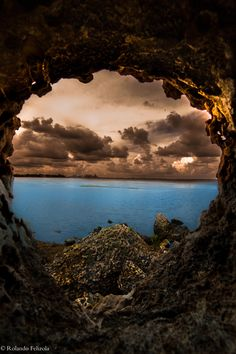 There is Life Outside - Cave - Miami - Florida - USA