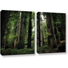 ArtWall Kevin Calkins Among the Giants 2-Piece Gallery-Wrapped Canvas Set, Size: 24 x 36, Green