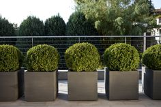 Quadra is a contemporary collection of square planters available in different heights and sizes, with which you can put together games in slopes to make the plants that are placed on them appear. Vases, Image Hd, Square Planters, Slide Design, Outdoor Planters, Christmas Gift Guide, Contemporary Design, Minimalist, Outdoor Furniture
