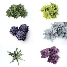 Felt Succulent Chat Loose succulents or on a by byoudesignskc