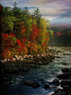 White Mountains   New Hampshire (by Beth)
