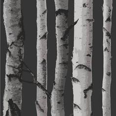 Fine Decor Wallpaper | Birch Tree - Black/Silver | Lancashire Wallpaper and Paint