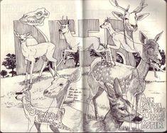 http://jaredillustrations.ch/ 05-09_2011_9