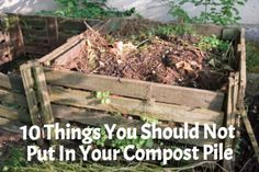 10 Things You Should Not Put In Your Compost Pile  #gardening #organicgardening