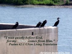 """I wait quietly before God, for my victory comes from Him."" Psalms 62:1 ©New Living Translation"
