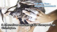 5 Alternatives Naturelles aux Shampooings Chimiques. Fitness Gym, Health Fitness, Alternative, Accounting, Beauty Hacks, Shampoo, Hair Styles, Armoire, Diy