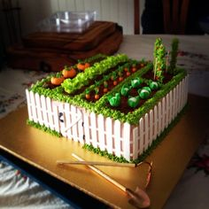 Vegie Patch Cake