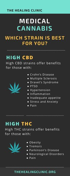 Looking Whole Plant CBD Oil or CBD Paste? Amma Life leads the way in supplying CBD health supplements grown in the EU. High in Cannabidiol our CBD Oils have been independently lab tested. Cannabis Plant, Ganja, 100 Pour Cent, Weed Facts, Weed Strains, Endocannabinoid System, Herbs, Medical Marijuana, Fibromyalgia
