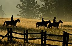 Riding the Fence by Andy Tolsma