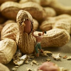 Minimiam Project: Little People in the World of Food by Akiko Ida and Pierre Javelle