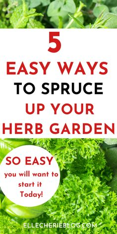 It is time to get into the herb garden and give it a spruce up! Check out the 5 easy ways that you can easily update your herb garden so you can enjoy the benefits of fresh herbs. Lee Garden, Easy Garden, Home And Garden, Garden Ideas, Do It Yourself Projects, Cool Diy Projects, Pinterest Garden, And Just Like That, Fresh Herbs