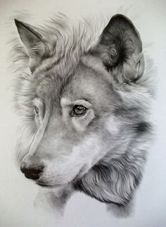 pencil drawings of tattoo designs - Google Search