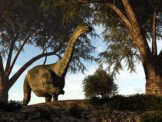 Antarctosaurus dinosaur - render by Elenarts - Elena Duvernay Digital Art Jurassic Park, Fine Art America, Giraffe, Camel, Digital Art, Canvas, Prints, Poster, Animals