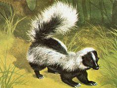 Sweet skunk painting