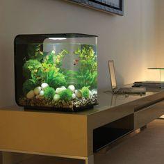 petit aquarium meuble bureau
