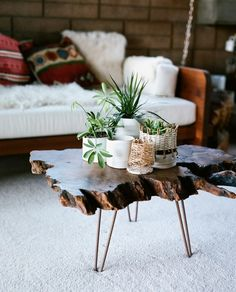 Plants + rugged wooden coffee table