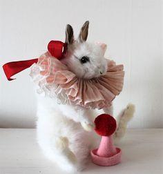 Anthropomorphic Taxidermy white rabbit