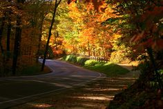 A leisurely day drive is the perfect way to take in Ohio's stunning fall foilage. From charming backroads to scenic metropark drives, here are 12 roads away from the city you'll love.