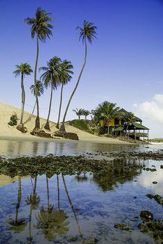 Praia de Genipabu, (Genipabu Beach) RN, Brasil