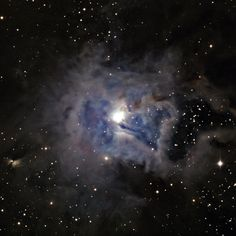 The Iris Nebula (NGC 7023), a bright reflection nebula in the constellation Cepheus about 1,300 light years from Earth. The nebula is lit up by the 7th magnitude star SAO 19158, which is the bright object at the center. The bright blues are due to small-particle scattering of light in the nebular material. LRGB color composite made with the WIYN 0.9m + S2KB CCD while dodging clouds on 4 October 2011.