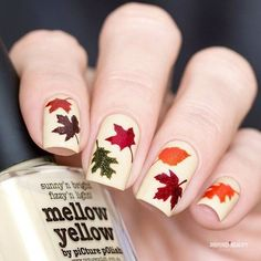 Details about Fall Stencils for Nails, Autumn Fall Nail Stickers, Nail Art, Nail Vinyls - All For Hair Color Trending Fall Nail Art Designs, Nail Polish Designs, Cute Nails, My Nails, Pretty Nails, Nailart Glitter, Nail Lacquer, Thanksgiving Nails, Autumn Nails