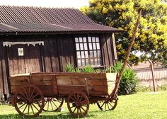 Horse Wagon, Horse Drawn Wagon, Old Wicker Chairs, Old Farm Equipment, Old Wagons, Old Bicycle, Farm Tools, Country Farm, Backyard Landscaping