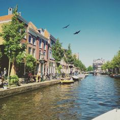 Cruising the Canals: Summer in the Netherlands