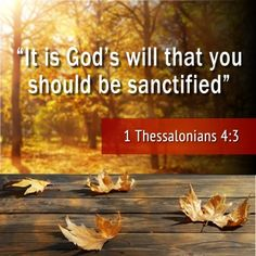 It is God's will that you should be sanctified. - Fifth Gospel Love The Lord, God Is Good, Gods Love, Bible Scriptures, Bible Quotes, 1 Thessalonians 4, Walk By Faith, Favorite Bible Verses, God Jesus
