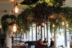 THE ARTISAN Restaurant falls in love with AARER SWISS PINE GIN - Eine erfrischend eigenständige Mischung aus alternativ und trendbewusst, aus Gewächshaus, Bistro und Quartierbeiz erwartet Sie im Artisan. Unter der Decke hängen Pflanzen, dazwischen Glühbirnen und Kräuterstöcke zieren die Wand. Seit Neustem wird nun AARVER SWISS PINE GIN von Only Good Spirits ausgeschenkt. www.onlygoodspirits.com #swissmade #bottle #gourmet #aarver #dock11 #onlygoodspirits #aarvergin #gin #swissgin #ginzurich