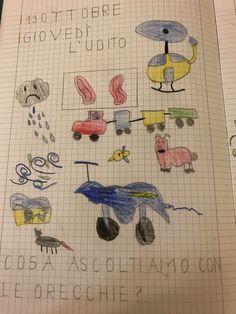 I cinque sensi, classe prima – Maestra Mihaela Kids Rugs, Teaching, Education, Fun, Maths, English, Geography, Primary Music, Music