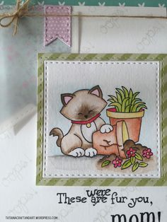 These were fur you 2015 These were fur you 2015  - cat Mother's day card - Naughty Newton Stamp set by Newton's Nook designs