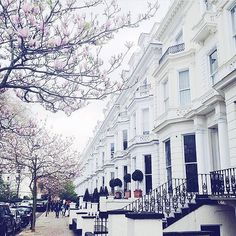 Nowhere better than London in the spring . #London #Chelsea #spring #blossom #floral #love #weheartit #tumblr #inspiration #iswai #iswaigirls by iswai_london