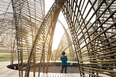 Forest Pavilion. n ARCHITECTS