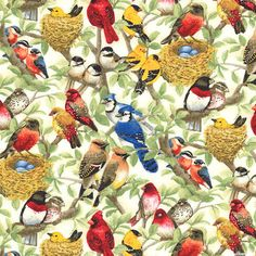 Housing Boom - Nesting Birds - Buttercreme