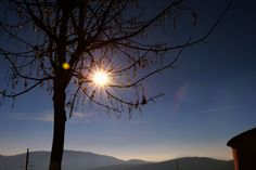 sun, sky, beauty in nature, tree, sunset, no people, sunlight, nature, sunbeam, scenics, tranquility, low angle view, outdoors, bare tree, branch, mountain, day