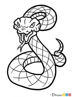 snake draw animals wild drawings drawing easy animal sketch drawdoo tattoo cool cartoon sketches doodle